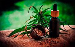Cannabis_S_60f1631a